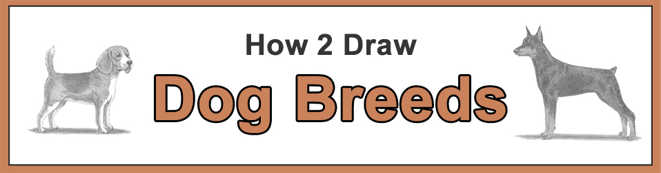 How to Draw Dog Breeds Popular Categories