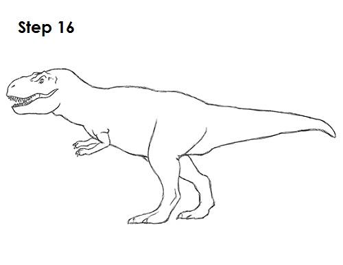 Draw Tyrannosaurus Rex 16