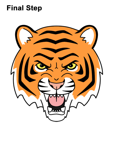how to draw a tiger head cartoon rh how2drawanimals com cartoon tiger head vector cartoon tiger head pictures