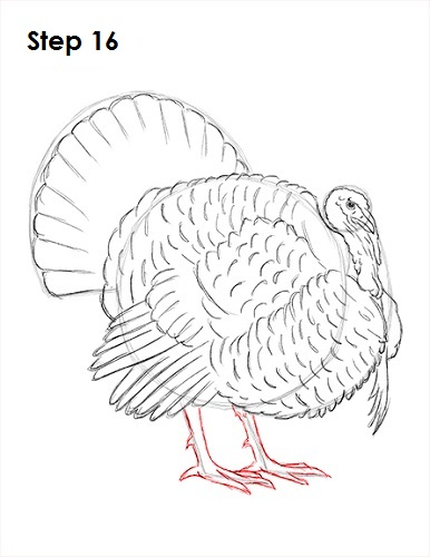 30 Great Happy Thanksgiving Animated Gif Images To Share  |Good Thanksgiving Drawings