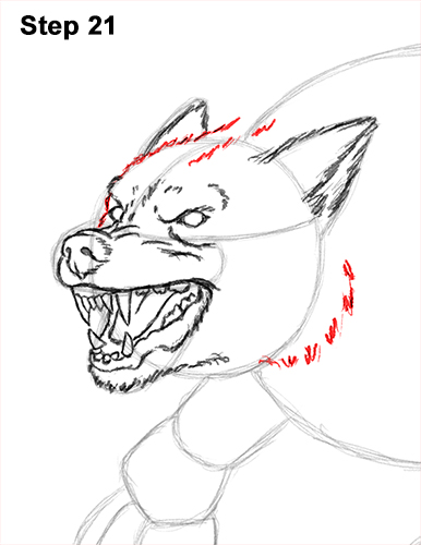 How to Draw Growling Snarling Scary Angry Werewolf 21
