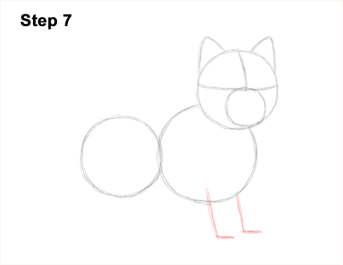 How to Draw a West Highland White Terrier Puppy Dog 7