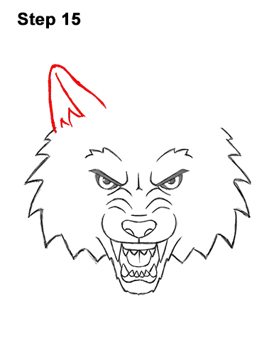 How to Draw Angry Growling Snarling Cartoon Wolf Head 15