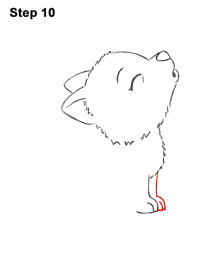 How to Draw Cute Little Cartoon Wolf Pup Cub Howling 10