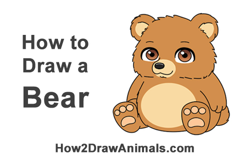 How To Draw A Bear Cartoon Video Step By Step Pictures