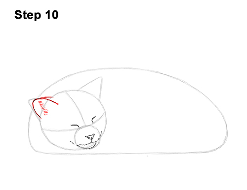 How to Draw a Cat Kitten Sleeping 10