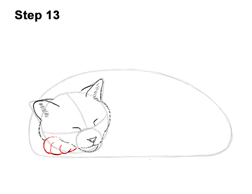How to Draw a Cat Kitten Sleeping 13