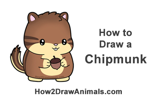 How to Draw Cute Cartoon Chipmunk Acorn