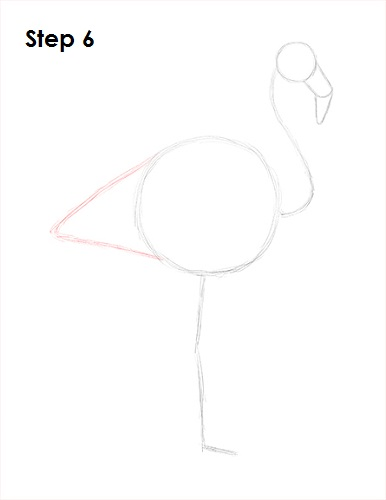 Draw Flamingo Bird 6