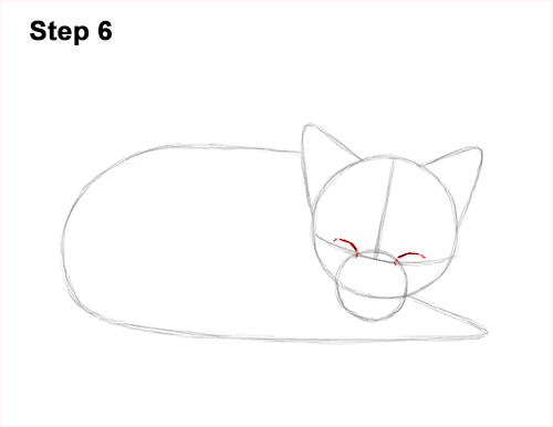 How to Draw Cute Red Fox Sleeping Asleep 6