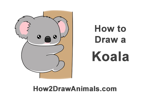 How to Draw Little Baby Small Cute Cartoon Koala Bear Chibi Manga