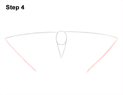 How to Draw an Emperor Moth Wings Insect 4