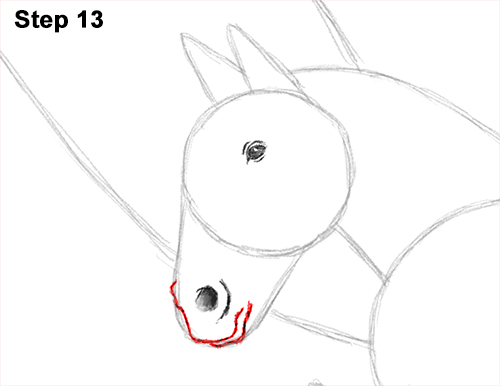 Draw Pegasus Horse Wings 13
