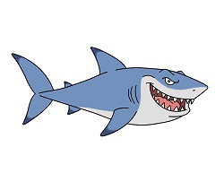 How to Draw a Cartoon Great White Shark
