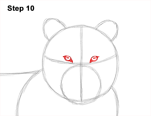 How to Draw a Tiger Laying Lying Down 10