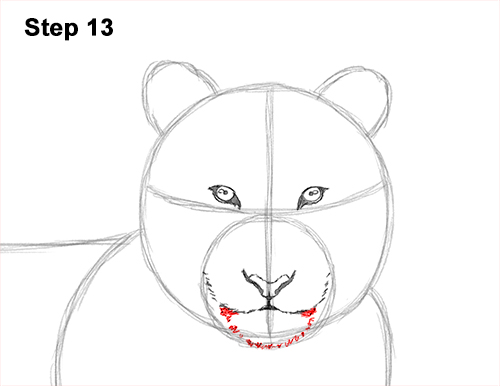 How to Draw a Tiger Laying Lying Down 13