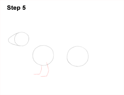 How to Draw a Common Least Weasel 5