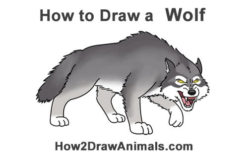 How to Draw a Angry Mean Snarling Cartoon Wolf