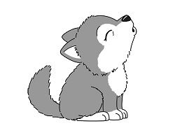 How to draw a cute Gray Wolf Howling cartoon Chibi Kawaii